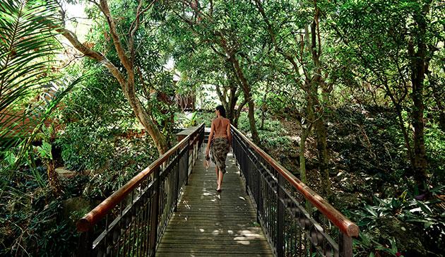 Environnement au PALM Hotel & Spa